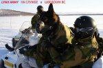 http://uazik.ru/forum/uploads/thumbs/1074_yeti-pro-army-v-800-lynx.jpg